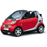 Автоковрики для Smart ForTwo 450 1998-2006 | Коврики в Смарт Форту 450